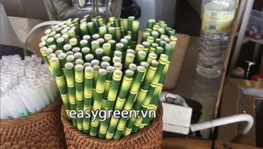 Ống hút giấy giá rẻ phù hợp cho người kinh doanh thay ống hút nhựa