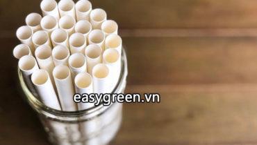 Địa chỉ bán ống hút giấy có giấy chứng nhận an toàn với sức khỏe